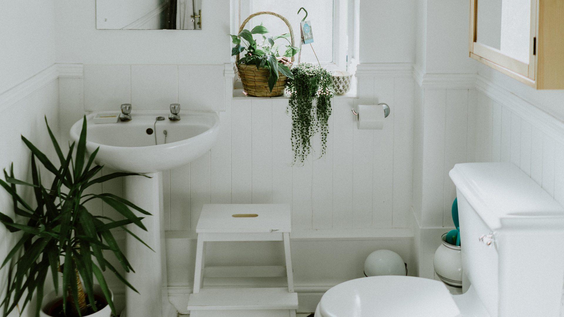 Toiletinspiratie